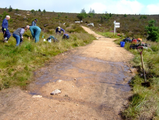 Work Party on Bennachie