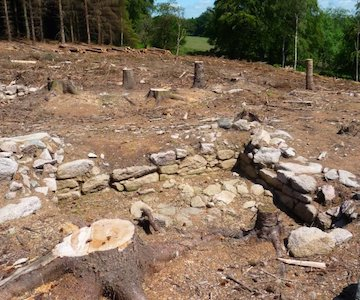 Trees Cut Round Bede House Site